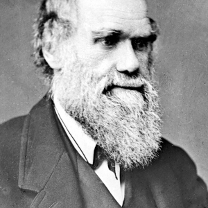 725 Charles Darwin.jpg
