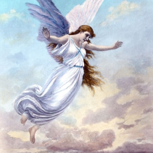 The Hope Angel